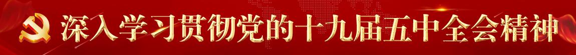 深(shen)入貫徹(che)黨的十(shi)九屆五(wu)中全會精神(shen)
